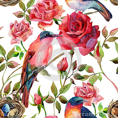 Free Watercolor Birds On The Pink And Red Roses Royalty Free Stock Photo - 62179005