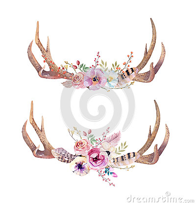 Free Watercolor Bohemian Deer Horns. Western Mammals. Watercolour Hip Royalty Free Stock Photo - 70288405