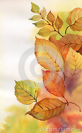 Watercolor branch