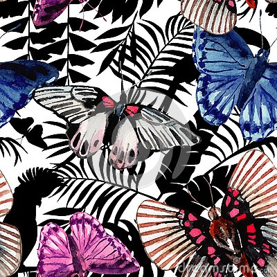 Free Watercolor Butterflies Pattern, Parrots And Tropical Plants  Stock Photos - 79256343