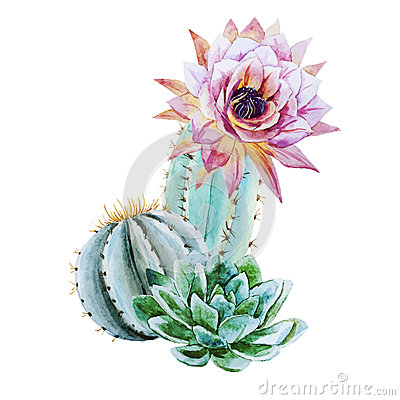 Free Watercolor Cactus Royalty Free Stock Photography - 53412937