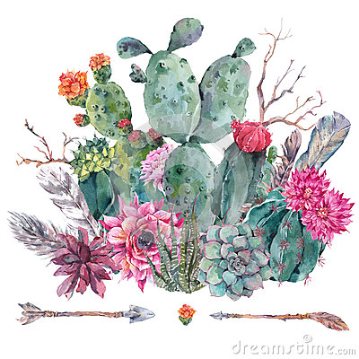 Free Watercolor Cactus, Succulent, Flowers Stock Photo - 74551950