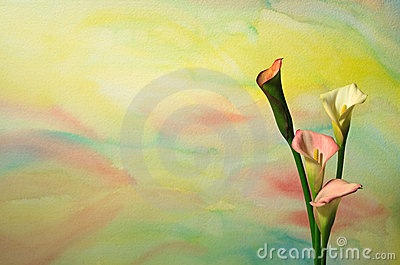 Watercolor With Calla Lilies 3