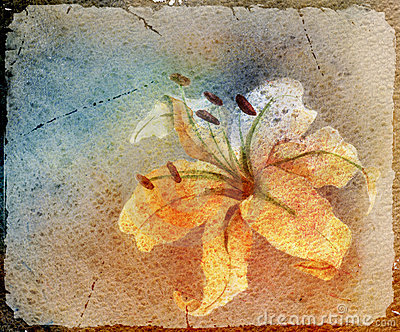 Watercolor card with lily