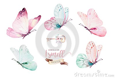 Watercolor colorful butterflies, isolated on white background. blue, yellow, pink and red butterfly illustration. Cartoon Illustration