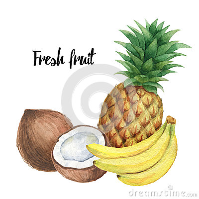 Free Watercolor Composition With Tropical Fruits Banana, Pineapple And Coconut Isolated On White Background. Stock Photos - 95827333