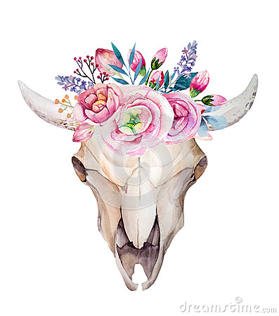 Free Watercolor Cow Skull With Flowers And Feathers Royalty Free Stock Photo - 63045275