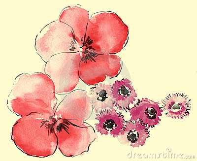 Watercolor of daisy and sakura