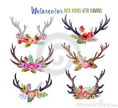 Free Watercolor Deer Horns Royalty Free Stock Image - 56944106