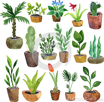 Free Watercolor Drawing Home Plants Stock Photos - 54528343