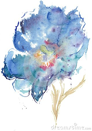 Free Watercolor Drawing Of Himalayan Blue Poppy Royalty Free Stock Photography - 117284637