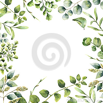 Watercolor floral frame. Hand painted plant card with eucalyptus, fern and spring greenery branches isolated on white Stock Photo