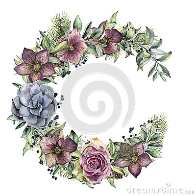 Free Watercolor Floral Wreath With Hellebore Flowers And Rose. Hand Painted Snowberry, Fir Branch And Leaves, Berry Royalty Free Stock Photography - 105491077