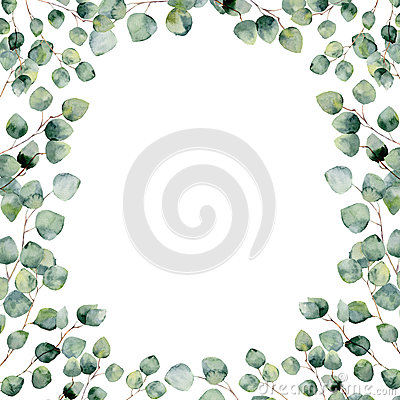 Free Watercolor Green Floral Frame Card With Eucalyptus Round Leaves. Stock Images - 75312804
