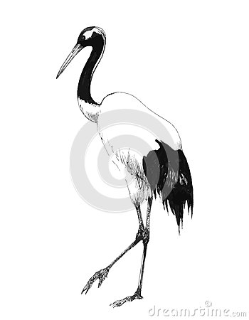 Free Watercolor Hand Drawn Illustration Isolated On White Background Stork Flying In The Sky. A Newborn Girl Boy Baby Stock Image - 76261121