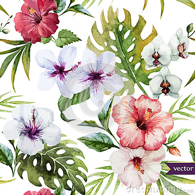 Free Watercolor, Hibiscus, Orchid, White, Palm, Tropical, Pattern, Background, Wallpaper Royalty Free Stock Image - 50004336