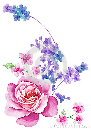 Free Watercolor Illustration Flower In Simple Background Stock Photography - 43419132