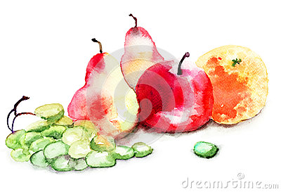 Watercolor illustration of fruit