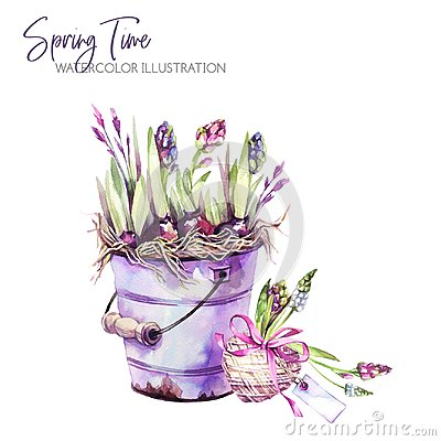 Free Watercolor Illustration. Garden Bucket With Hyacinth Seedlings, Heart And Tags. Rustic Objects. Spring Collection In Royalty Free Stock Photo - 109818605