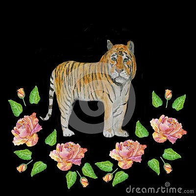 Watercolor.Illustration of a tiger in roses on a black background. Cartoon Illustration