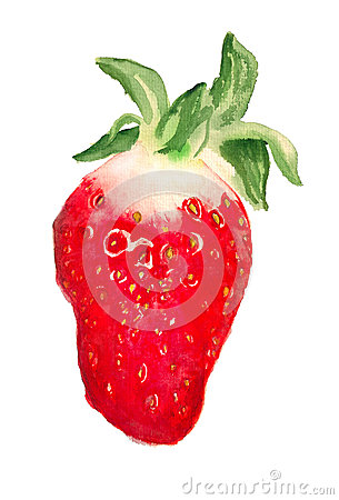 Watercolor image of strawberry