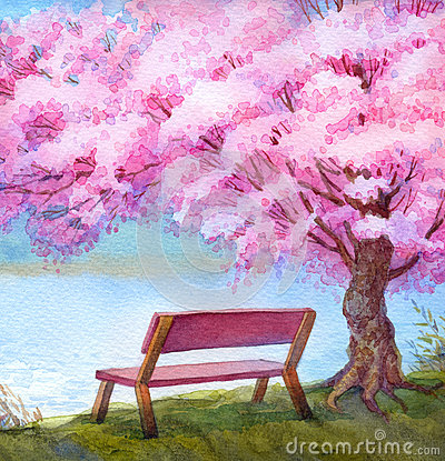 Free Watercolor Landscape. Bench By River Under Flowering Peach Tree Stock Images - 68966944