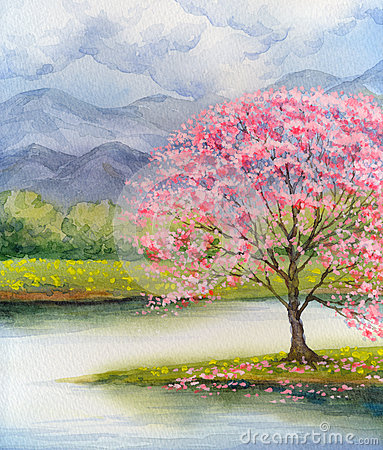 Free Watercolor Landscape. Flowering Pink Tree By Lake Royalty Free Stock Photos - 80663748