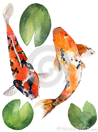 Watercolor oriental rainbow carp with water lily leaves set. Koi fishes isolated on white background. Underwater Cartoon Illustration
