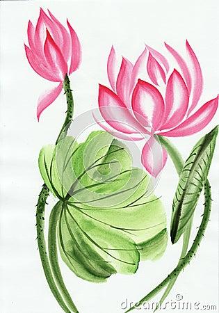 Free Watercolor Painting Of Pink Lotus Flower Stock Image - 28412711