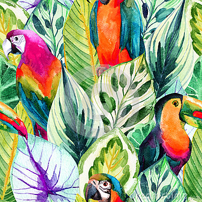 Free Watercolor Parrots And Tropical Leaves Seamless Pattern Stock Image - 70172021
