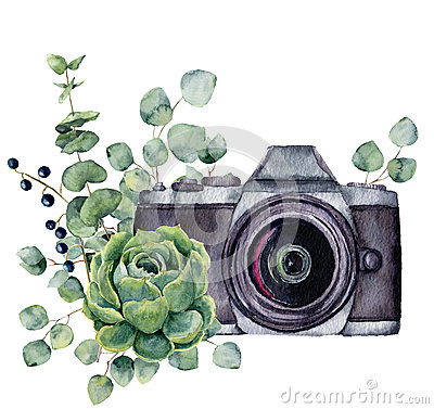 Watercolor photo label with succulent and eucalyptus. Hand drawn photo camera with floral design isolated on white Stock Photo