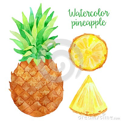 Free Watercolor Pineapple Royalty Free Stock Images - 58421829