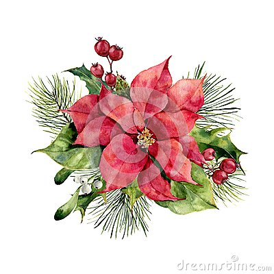 Watercolor poinsettia with Christmas floral decor. Hand painted traditional flower and plants: holly, mistletoe, berries Stock Photo