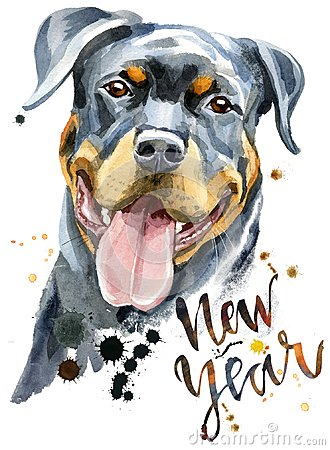Free Watercolor Portrait Of Rottweiler Royalty Free Stock Photo - 100828745