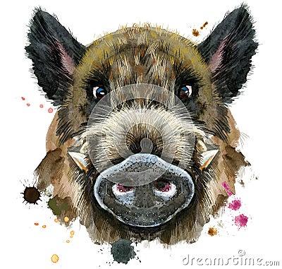 Free Watercolor Portrait Of Wild Boar Stock Image - 114643901