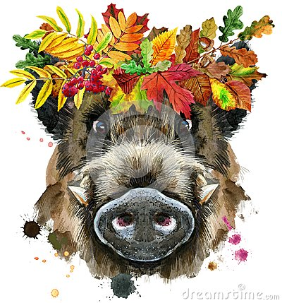 Free Watercolor Portrait Of Wild Boar With Wreath Of Leaves Stock Image - 125155701