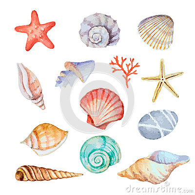 Free Watercolor Set Of Seashells Royalty Free Stock Photo - 53454405