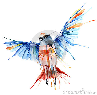 Free Watercolor-style Vector Illustration Of Bird. Royalty Free Stock Image - 52788996