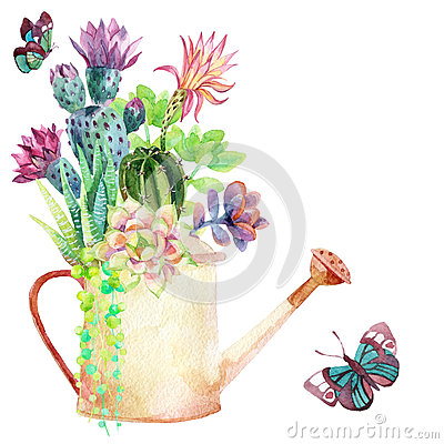 Free Watercolor Succulents. Royalty Free Stock Images - 60045359
