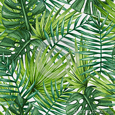Free Watercolor Tropical Palm Leaves Seamless Pattern. Stock Image - 67960221