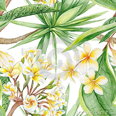 Free Watercolor Tropical Plants Stock Photos - 54889423