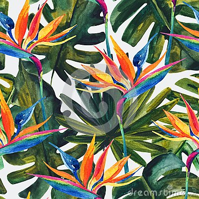 Free Watercolor Tropical Seamless Pattern With Bird-of-paradise Flower, Monstera, Palm Leaf. Royalty Free Stock Photography - 114538867