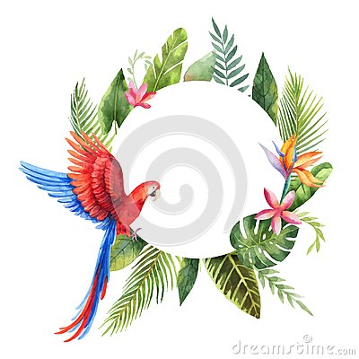 Free Watercolor Vector Frame With Red Parrot, Tropical Leaves And Flowers Isolated On White Background. Royalty Free Stock Photography - 119614917