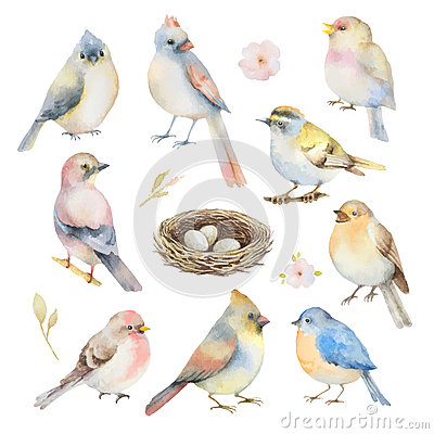 Free Watercolor Vector Set Of Birds. Royalty Free Stock Photo - 67469315