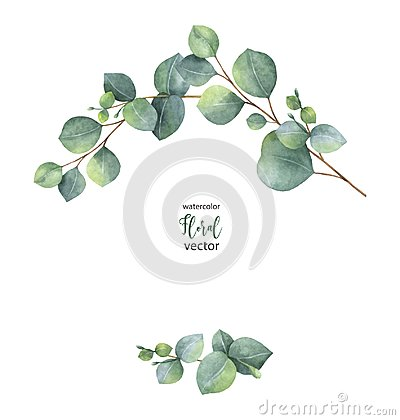 Free Watercolor Vector Wreath With Green Eucalyptus Leaves And Branches. Royalty Free Stock Photo - 105363415