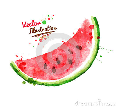 Free Watercolor Watermelon Royalty Free Stock Photo - 53833465