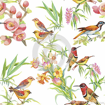 Free Watercolor Wild Exotic Birds On Flowers Seamless Pattern On White Background Royalty Free Stock Images - 59571989