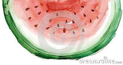 Watercolour dell anguria