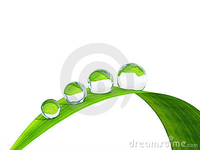 Waterdrop on a blade of grass.