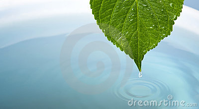 Waterdrop with leaf